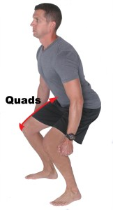 Figure 1: Lengthening on the Quadriceps Muscles to Slow Knee and Hip Flexion