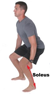 Figure 2: Lengthening on the Soleus Muscle to Slow Ankle and Knee Flexion