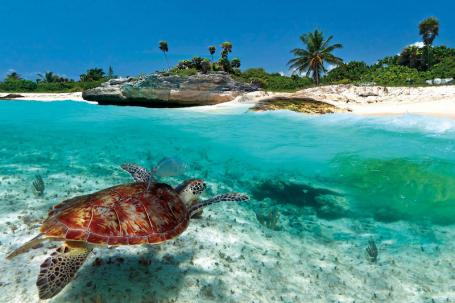 Airbnb Partners With Tropical Caribbean Paradise Antigua And Barbuda