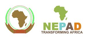 NEPAD's 5% Agenda initiative for infrastructure financing in Africa Launched