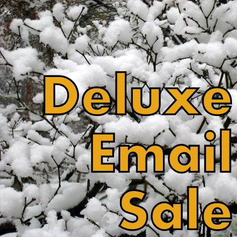 Save 45% on Deluxe Email