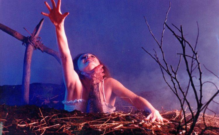 the evil dead promo shoot 1981 lobby 1024x634 5 films cultes à découvrir avant leur disparition du catalogue