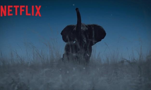 La Terre, la nuit :  la mini-série lèvera le voile sur le monde des ténèbres (bientôt sur Netflix)