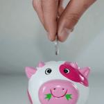 Nethervoice Manage Your Money