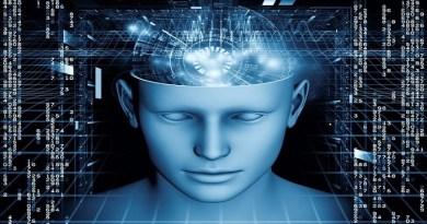 Huiman brain on chip-Netmarkers