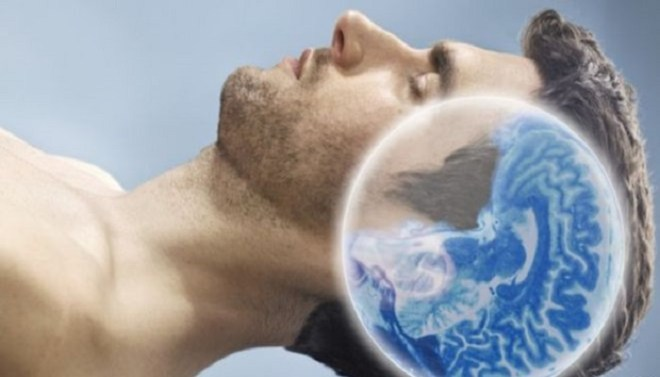 brain removes waste while sleeping-Netmarkers