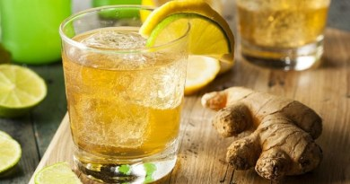 gingerol for joint pain-Netmarkers