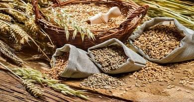 whole-grains-netmarkers