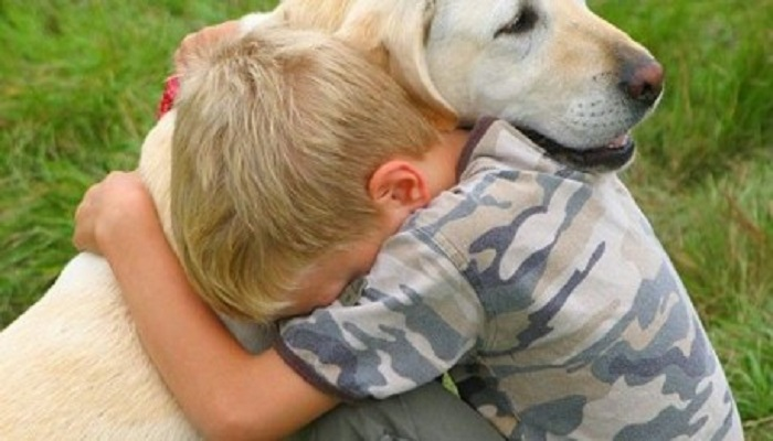 dogs-can-sense-sadness-netmarkers