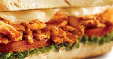 chicken-sandwiches-recipe-netmarkers