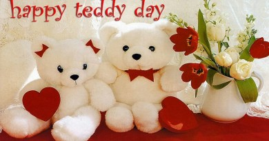 Happy-Teddy-Day-4-Netmarkers