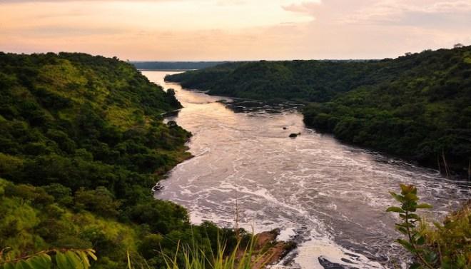 Nile-netmarkers