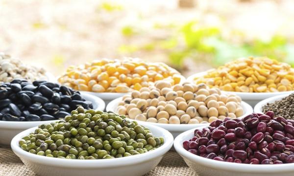 beans-netmarkers