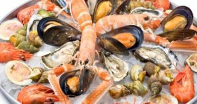 seafood1-netmarkers