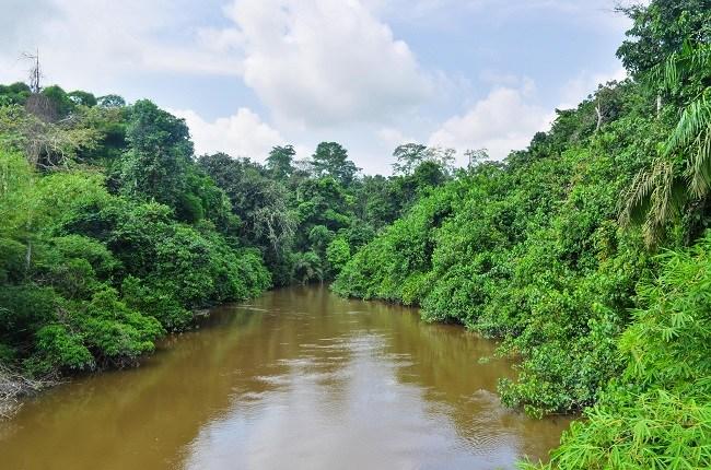 Congo-River-netmarkers