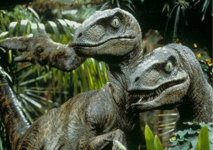 Velociraptor-netmarkers