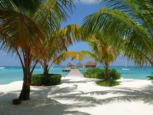 maldives-netmarkers