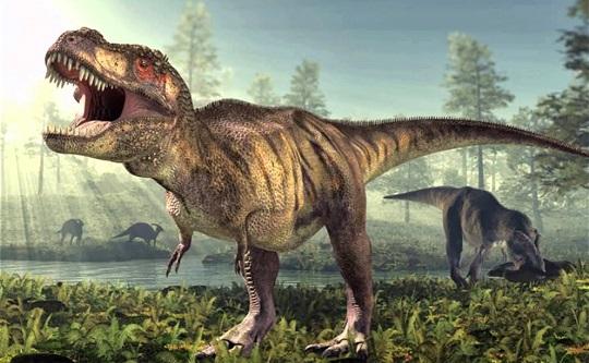 trynosaurus-netmarkers