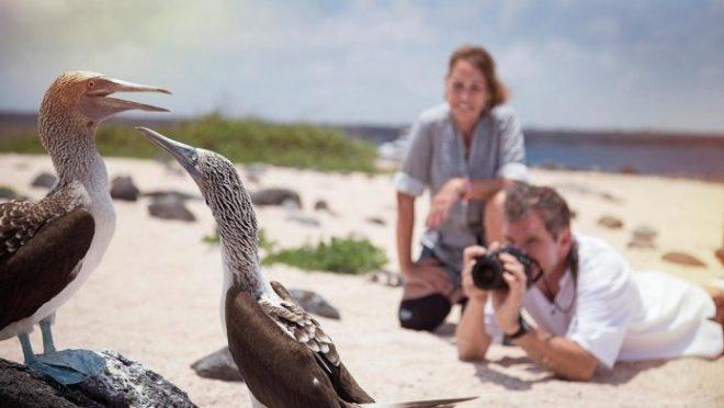 Galapagos Islands-netmarkers