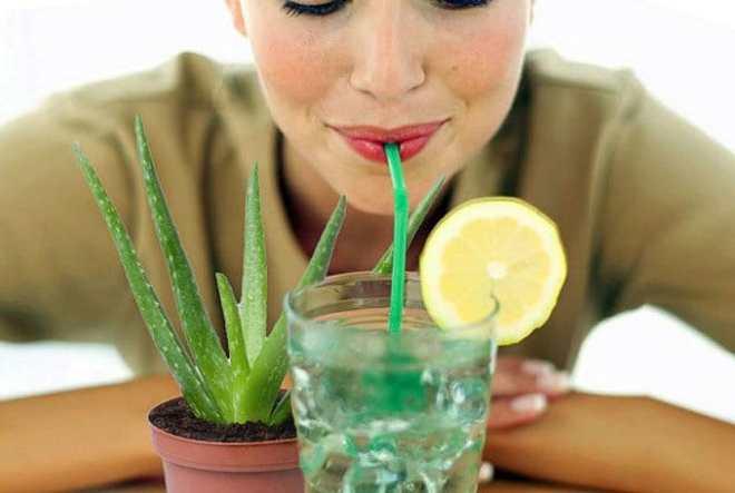 Detoxifies The Body-netmarkers