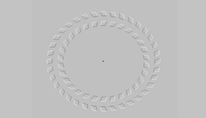 Rotating rings-Netmarkers