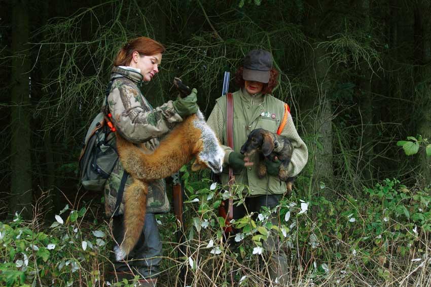 Kunstige grave til rævene hjælper truede fugle