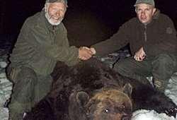 Rekordbjørn forbliver i hjemland