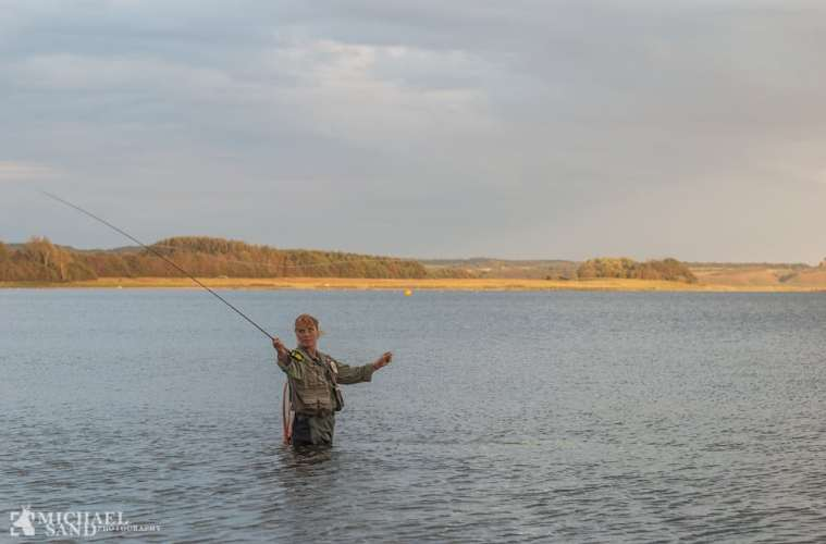 Ulovlige fiskeredskaber truer bestanden af havørred