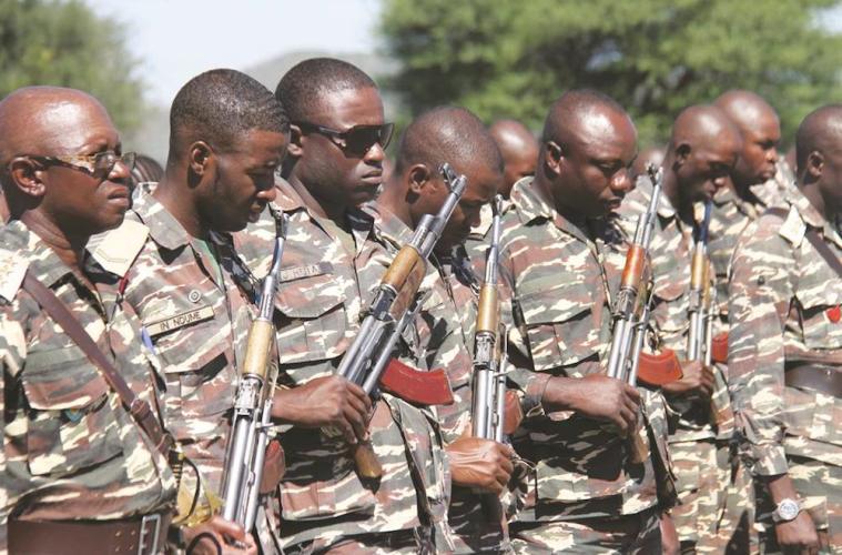 Namibia: Hæren sættes nu ind mod krybskytterne