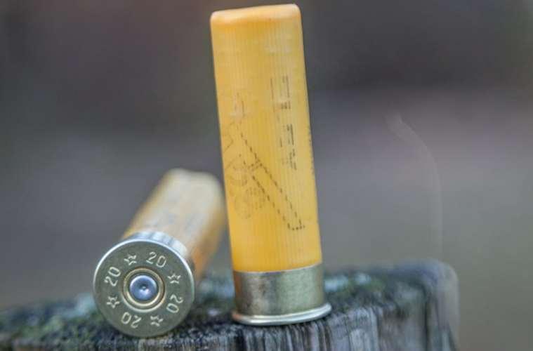 Transport af ammunition i privat bil