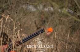 Viden om: Forsikring via jagttegnet