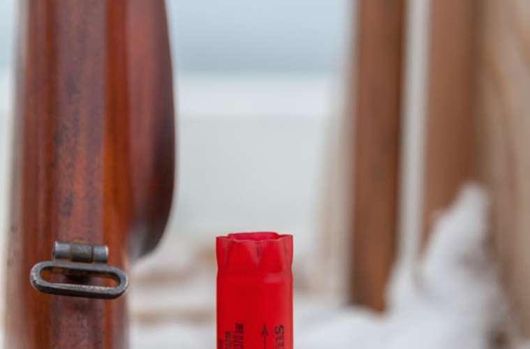 Haglvåben - hagl, tryk og stempler