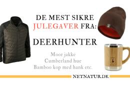 De meste sikre julegaver fra Deerhunter