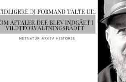 Historie: Tidligere DJ formand talte ud om korridoraftaler i VFR