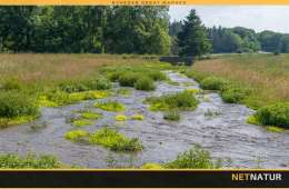 Naturpleje bliver lettere for landbruget