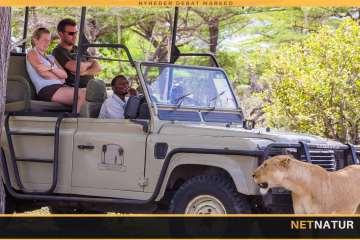 Afrika: Jagt- og fototurisme og omfattende krybskytteri