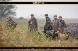 Vådeskud og andre uheld i indeværende jagtsæson