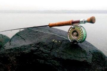Fjordfiskeri efter havørreder