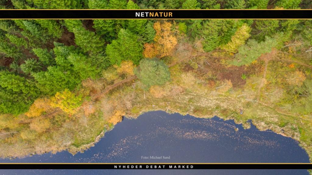 Naturareal