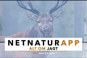 Netnatur App