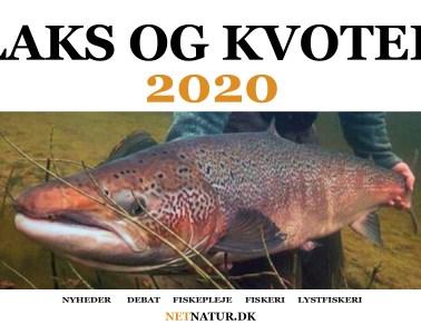 Laks og kvoter 2020