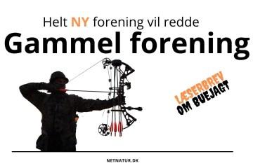 Dansk Buejæger forbund.