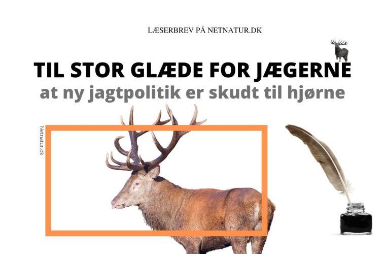 ny hjortepolitik