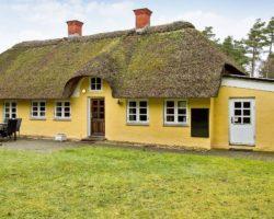 Sommerhus/Bukkejagt i Blåvand-området udlejes