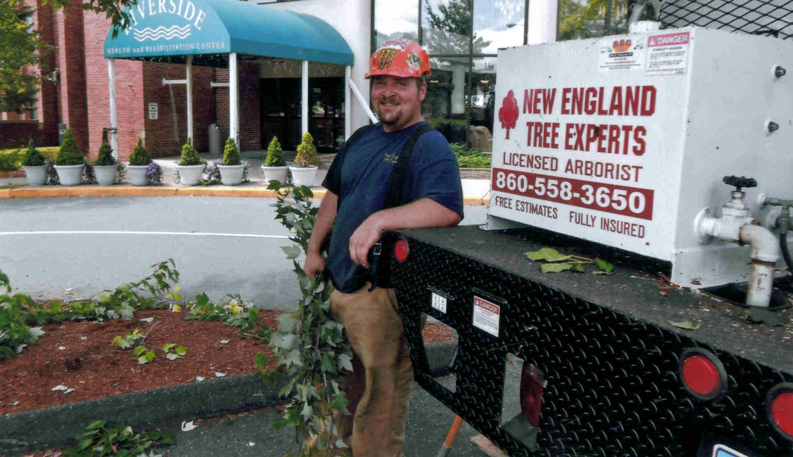 New England Tree Experts