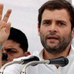 Rahul Gandhi Net Worth