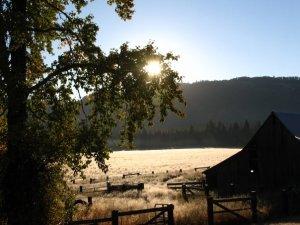 Ranch Pic 1