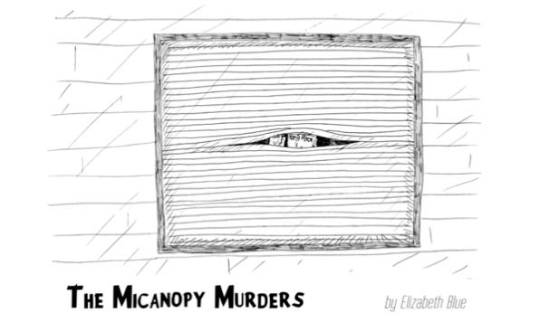 Micanopy Murders announcement