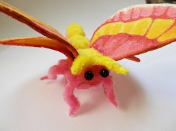 Mariposa Soturisi 3