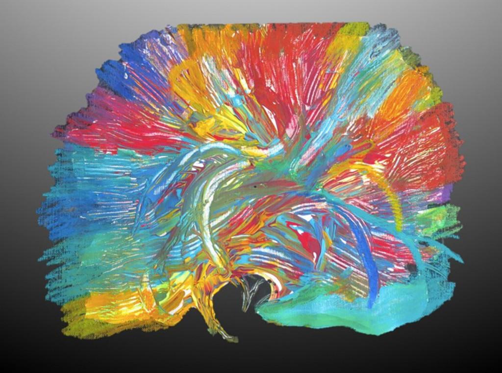 Abstract Brain Artwork   www.imgkid.com - The Image Kid ...